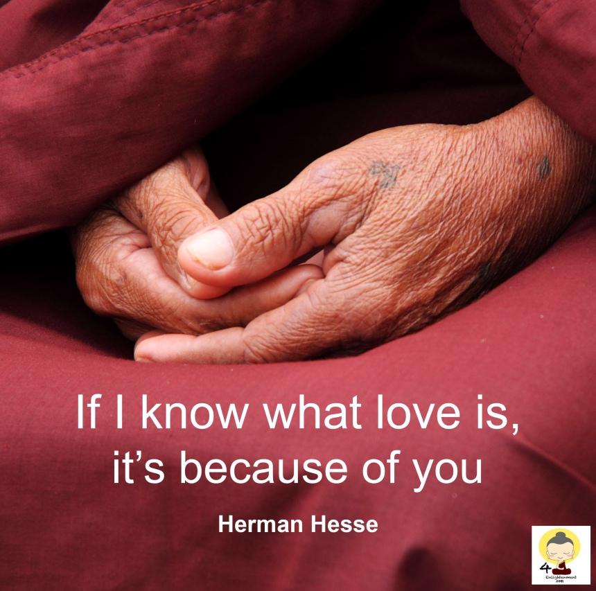 Quote, love quotes, self help, spirituality, spiritual, compassion, loving kindness, compassion