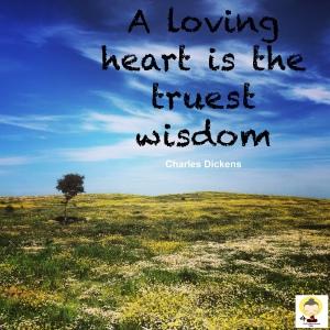 Love quote, love quotes, wisdom, spirituality, spiritual, compassion, loving kindness, positivity, happiness