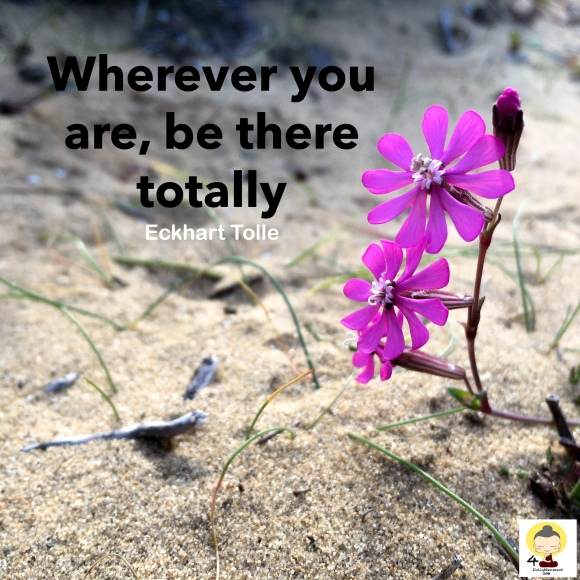 Words of wisdom, quotes, life quotes, quote, sayings, Eckhart Tolle, meditation