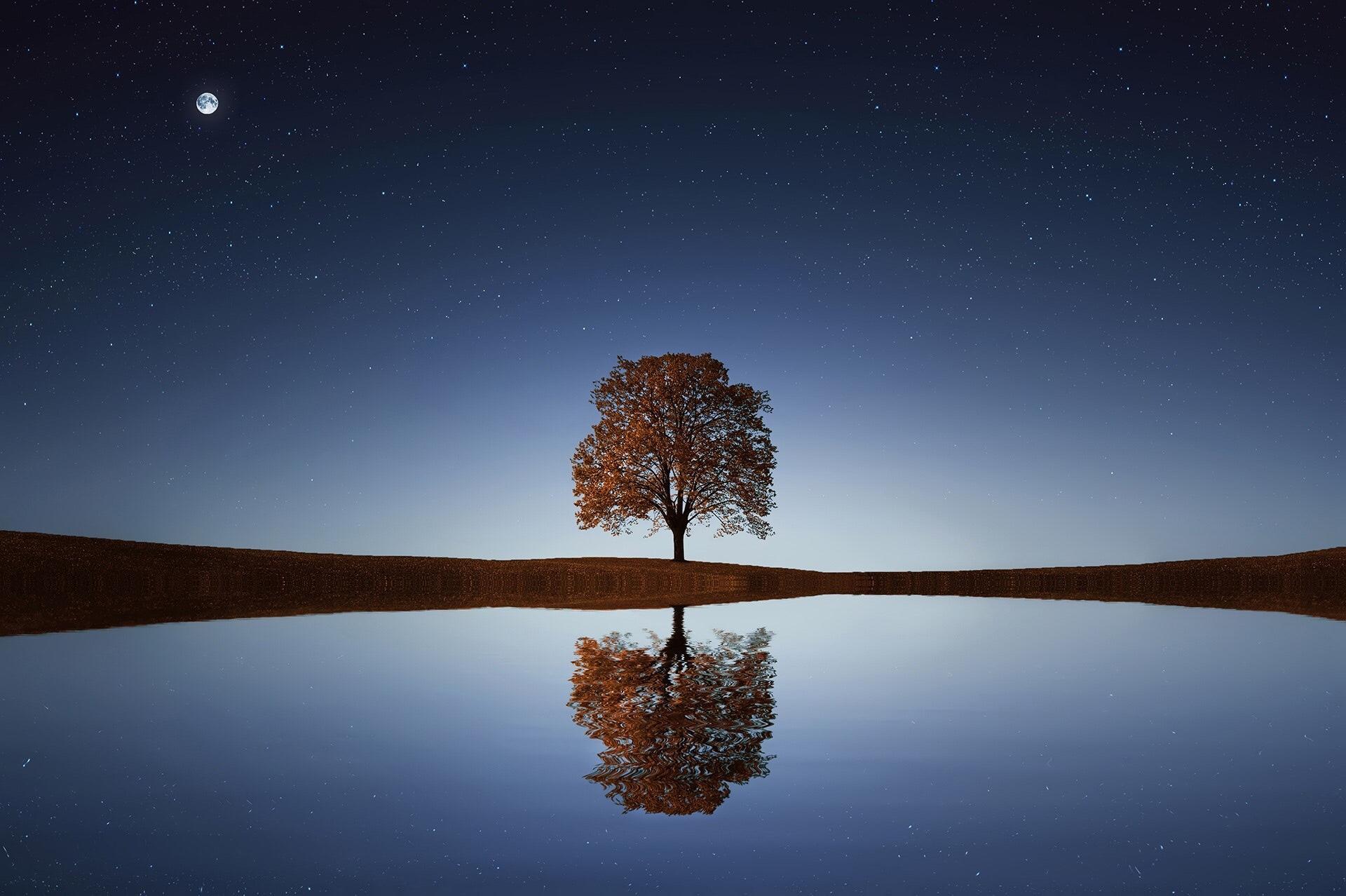 Loving kindness, compassion, loving, generosity, wellbeing, spirituality, spiritual, happiness, positivity