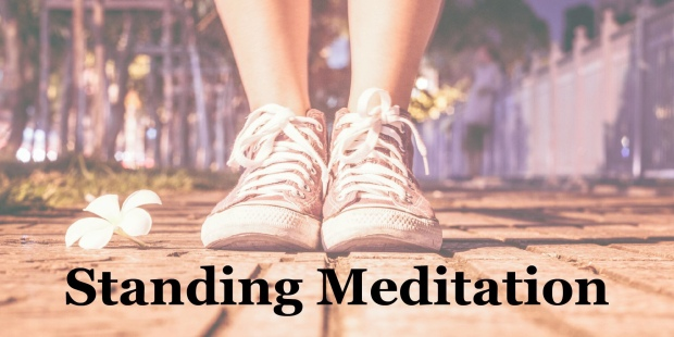 goal of Buddhism, meditation posture and positions, the real facts of life, change your mindset, inner contentment, Theravada Buddhism, personal development through mindfulness, words of wisdom, what meditation does for the brain, commit to sit, changing thought patterns, developing minds, standing Meditation,