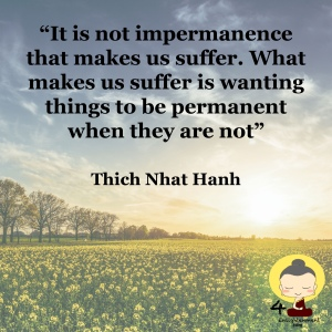 thought of the day, plum village France, mindful quotation, spiritual monk quotes, Thich Nhat Hanh's Words Of Wisdom, mindfulness sayings, personal development through mindfulness, Buddhist philosophy, Meditation Masters, interbeing, zen masters, inspirational quotes,