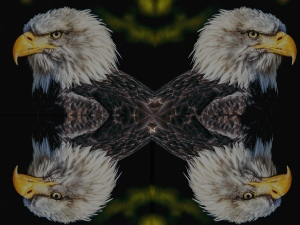 The two three headed eagles moral story,