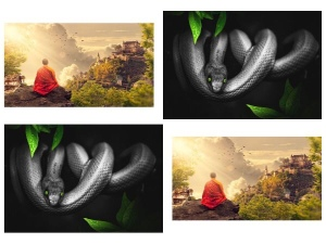 The Monk and the snake moral story,